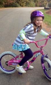 cheyney bike